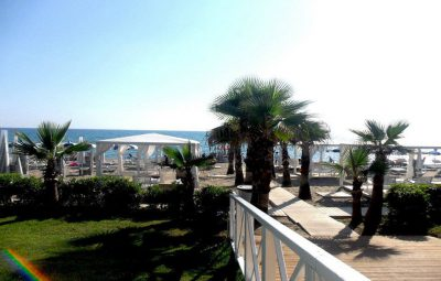 spiaggia-palme2